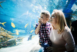 Mother and son watching sea life in oceanarium - 193425468