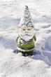 Gnome covered in snow/Gnome closeup in winter snow