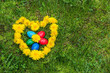 Painted Easter eggs lie on the green grass in dandelions, laid out in the form of a heart. Sunny day. - 193488800