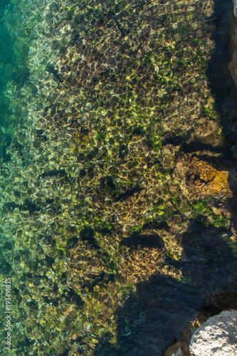 Keuken foto achterwand Olijf Stony bottom under greenish transparent water