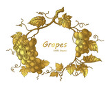 Grapes frame hand drawing vintage engraving illustration with gold color