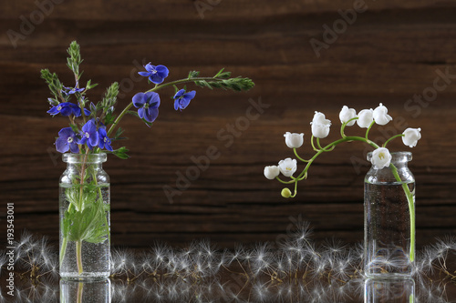 Aluminium Paardenbloemen May flowers