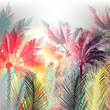 Jungle colorful palms and tropical plants. Vector design - 193561886