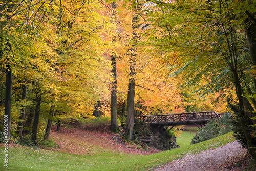 Fotobehang Brussel bridge in colorful fall leaves in brussels