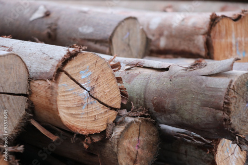 Keuken foto achterwand Brandhout textuur Firewood with chalk material stack energy background