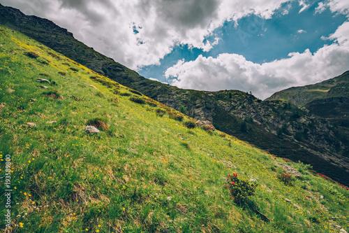 Fotobehang Pistache paesaggio alpino