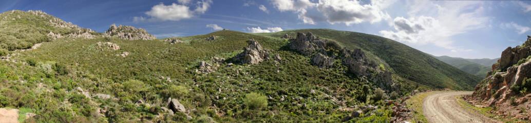 Sardegna, Villasalto, oasi naturale di Monte Genis