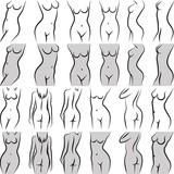 female torso in diferent poses - 193621867