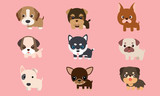 Vector series about cute puppies poodles, Siberian Husky, bull terriers and other breeds.