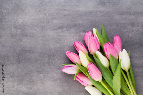 Mother's Day, woman's day, easter, pink tulips, presents on gray  background. - 193683881