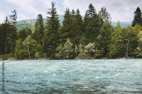 Las iglasty i rzeka w górach dzikiej przyrody Krajobraz Podróż spokojny krajobraz latem zielony