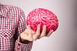 Woman hand holding human brain