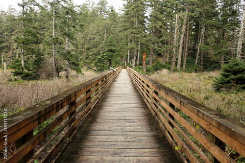 Aluminium Bruggen Wooden bridge in a park in Long Beach, WA.