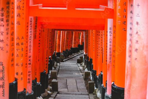 Staande foto Rood Fushimi Inari Shrine, shrine, Torii