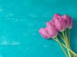 Tulip flowers - 193728440