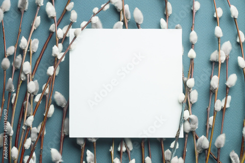 Pussy willow branches and blank card. - 193746419