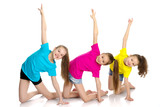A Group Of Girls Gymnasts Perform Exercises Wall Sticker