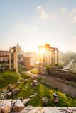 Rome forum romain
