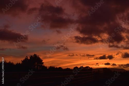 Foto op Aluminium Bordeaux New Zealand Sunrise