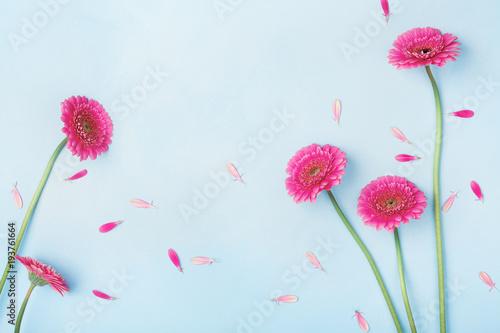 Piękny wiosny tło z różowymi kwiatami i płatkami. Kwiatowy ramki. Płaskie świeckie stylu.