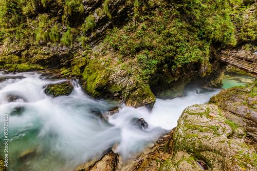 Fotobehang Bergrivier Mountain river Radovna in the Vintgar gorge, a natural Triglav national Park, Slovenia.