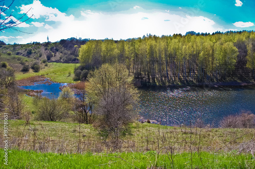Fotobehang Lente The midday spring sun illuminates the wood on a hill slope near the lake