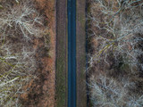 Aerial view of straight road in Amboise forest, France. Winter season. - 193786225