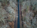 Aerial view of straight road in Amboise forest, France. Winter season. - 193786604