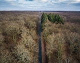 Aerial view of straight road in Amboise forest, France. Winter season. - 193786883