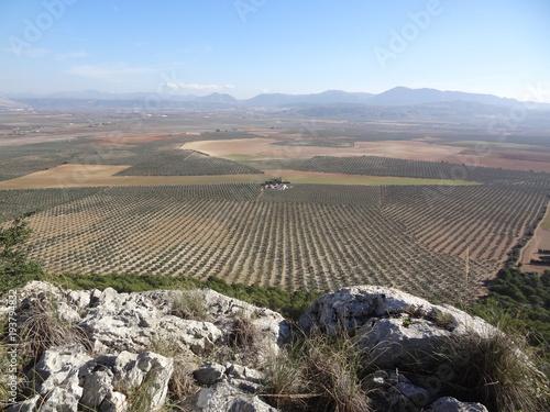 Foto op Canvas Grijs Blick über die weite Landschaft von einem Berg aus