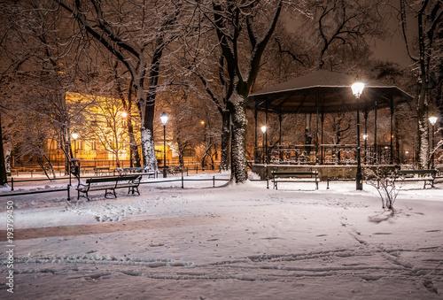 Tuinposter Diepbruine Planty park in the winter night, Krakow, Poland