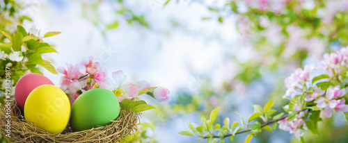 Colorful easter eggs in spring