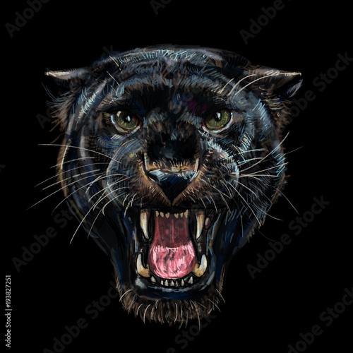 Roaring black panther on black background - 193827251