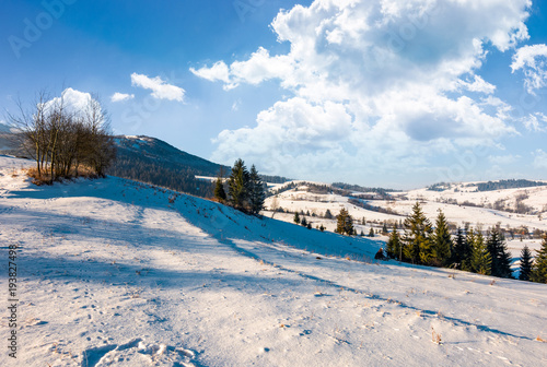 Aluminium Wit wonderful winter landscape in mountains. lovely rural scenery with snowy slopes on a bright sunny day