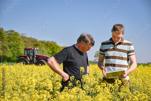 Fototapeta Landwirtschaftliche Fachberatung, Landwirt und Berater im blühenden Rapsfeld