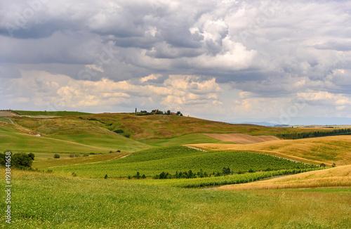 Fotobehang Donkergrijs farmland and green field in tuscany, Italy