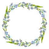Small blue flowers. Wreath of forgot-me-nots. Watercolor.