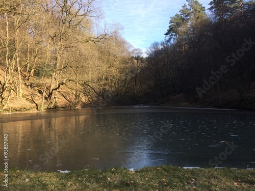 Zugefrorener Teich im Wald