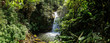 Jungle setting with Waterfall in Cloudbridge Nature Reserve, Costa Rica. - 193862473