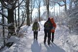 Fototapeta  - Turyści w zimowym lesie © bnorbert3
