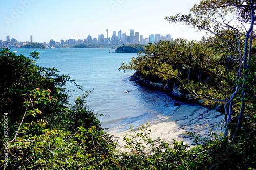 In de dag Pool Sydney city view, Whiting beach, Sydney skyline, Australia, view point, Bradley Head