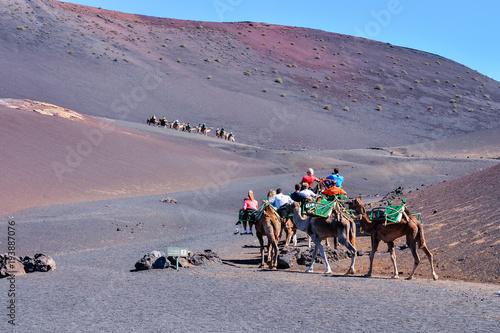 Foto op Canvas Lavendel Volcanic landscapes on Timanfaya.