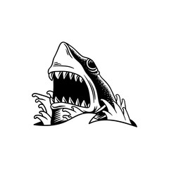 Illustration of shark