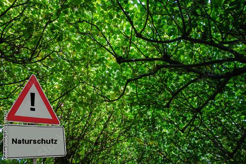 Fotobehang Groene Symbolfoto Naturschutz