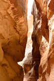 The Siq - ancient canyon in Petra, Jordan - 193943027