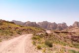 Rose City of Petra - 193943245