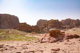 Rose City of Petra - 193943267
