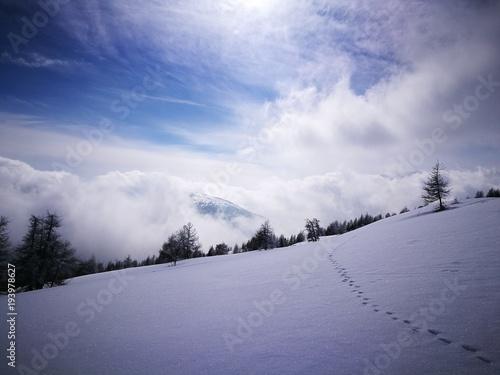 Winter Wetter Gegenlicht