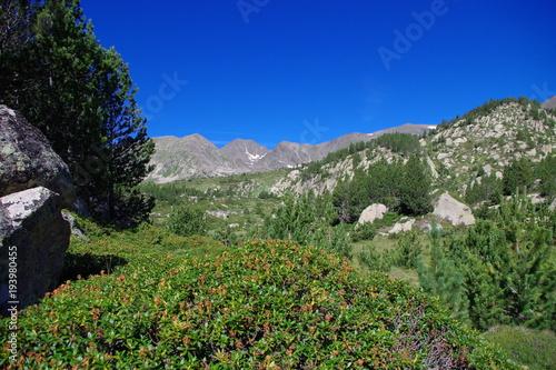 Deurstickers Khaki Paysage de montagne vert et bleu