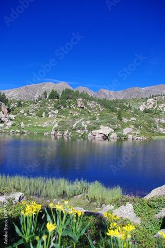 Aluminium Donkerblauw Fleurs jaunes, lac bleu et montagne verte